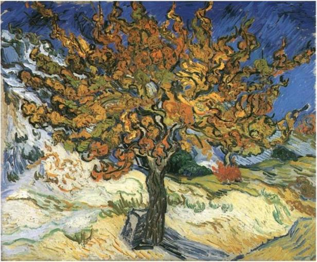 mulberry-tree-the